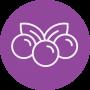 plod-icon
